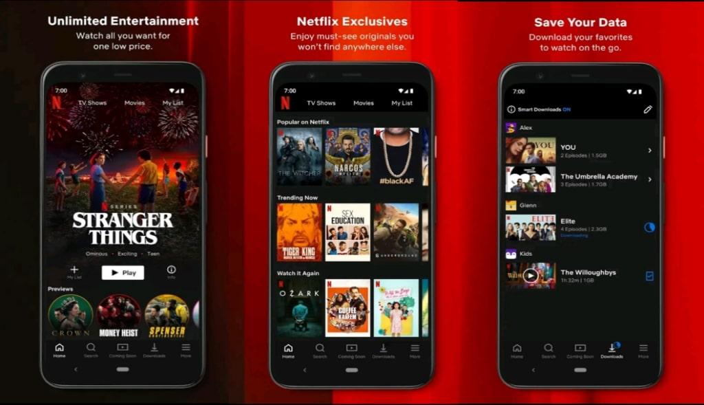 Netflix Premium Mod Apk 2021(New Version) : Download ...