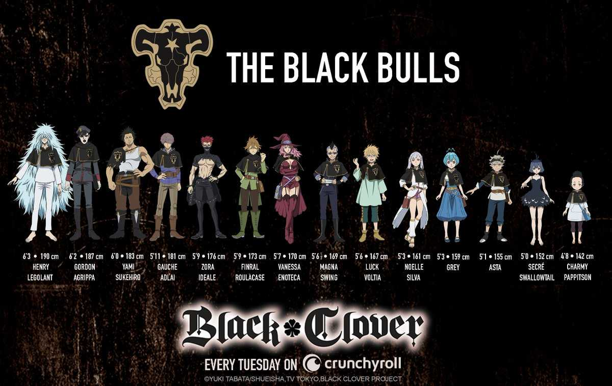 Black Bulls vice-captain
